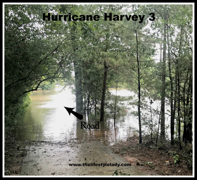 Hurricane Harvey 3